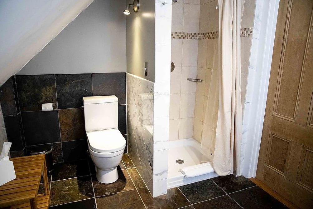 Shower near toilet